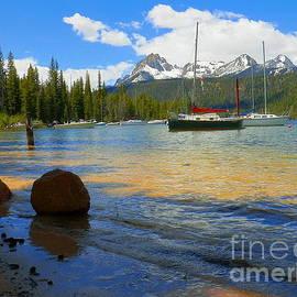 Summer By The Lake Redfish Lake Stanley Idaho by Art Sandi