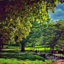 Summer Day - Central Park New York by Miriam Danar
