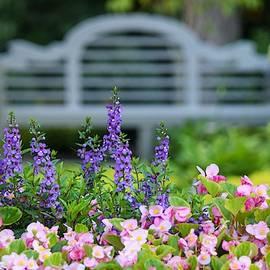 Mary Ann Artz - Summer Garden