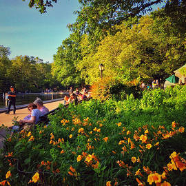 Summer in the Park - Central Park New York by Miriam Danar
