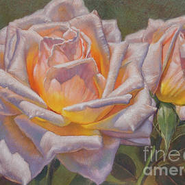 Summer Roses 2 by Fiona Craig