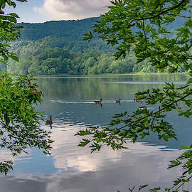Summer Serenity at Cove Lake by Marcy Wielfaert