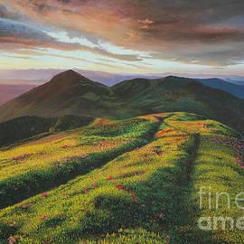 Summer Sunrise by Michael Nowak