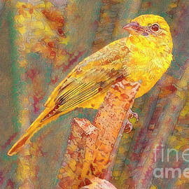Summer Tanager by Deborah Benoit