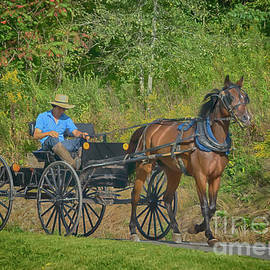 Summer's End Amish Boy by Janice Pariza