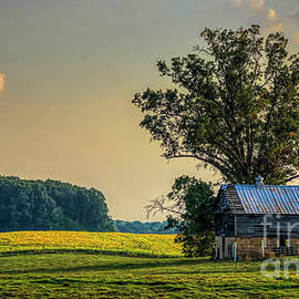 Summer's End In Ohio by Janice Pariza