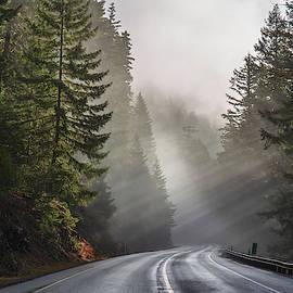 Sun rays and fog by Lynn Hopwood