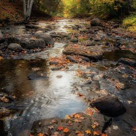Joann Long - Sunburst Serenity