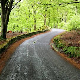 Sunday Drive by Nicholas Blackwell