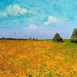 Sunflower Fields-end Of Summer by Asha Sudhaker Shenoy