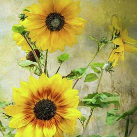 Sunflower Happy by Anita Hubbard
