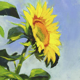 Sunflower by Marsha Karle