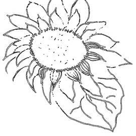 Sunflower PAINT MY SKETCH by Delynn Addams