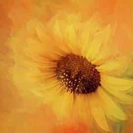 Sunflower Painterly Version by Terry Davis