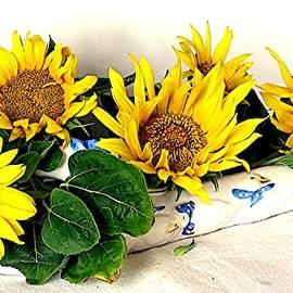 Sunflowers by Barron Holland