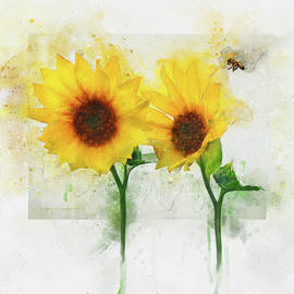 Sunflowers With Bee Watercolor by R christopher Vest