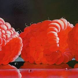 Sunlit Raspberries by Katarzyna Lappin