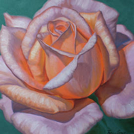 Sunlit Roses 3 by Fiona Craig