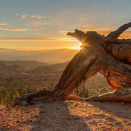 Sunrise at Bryce Canyon 0964 by Kristina Rinell