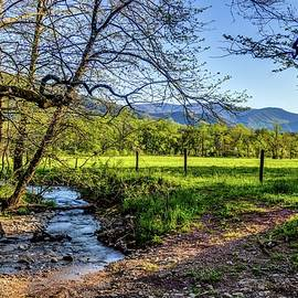 Sunrise Creek Dsc_0199 by Michael Thomas