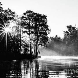 Sunrise on the Bayou - BW by Scott Pellegrin