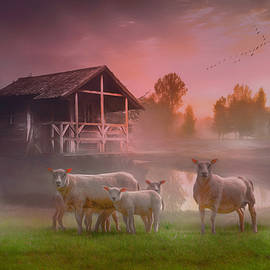 Sunrise on the Farm on a Dreamy Morning by Debra and Dave Vanderlaan