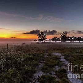 Sunrise Road by Bob Marquis