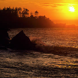Sunset Bay Sunset by Robert Potts