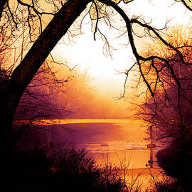Sunset Golds at the Bridge by Debra and Dave Vanderlaan
