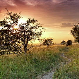 Sunset idyll by Ren Kuljovska
