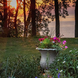 Sunset In The Garden by Rebecca Samler