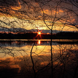 Sunset in the Park by Denise Harty