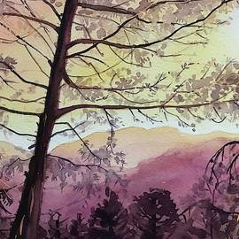 Skyline Sunset Topanga by Luisa Millicent