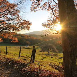 Sunset on a Mountain Trail by Patricia Joynes