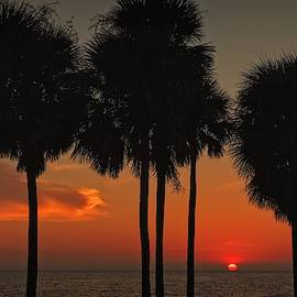 Sunset Over The Gulf by Ronald Lutz