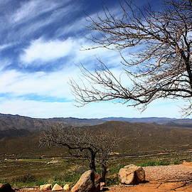 Death Valley by Atiqur Rahman