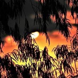 Sunset Sunburn by John Glass