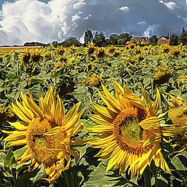 Sunshine on a Summer Day Impressionism by Debra and Dave Vanderlaan