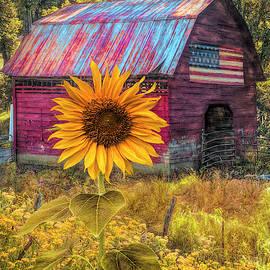 Sunshiny Painting by Debra and Dave Vanderlaan