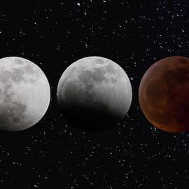 Super Blood Wolf Moon - Celestial Art by Jordan Blackstone