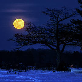 Super Snow Moon Over Detroit Point by Ron Wiltse