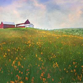 Superbloom Hilltop Farm by R christopher Vest