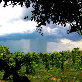 Supercell Rain Shaft by Jeff Kurtz