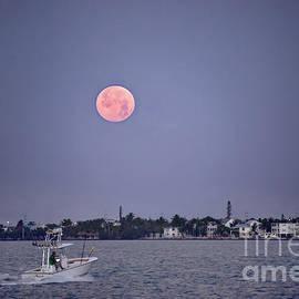 Supermoon Moonset Over Marathon, Florida by Catherine Sherman