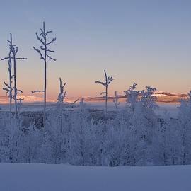 Tamara Sushko - Swedish lapland in Christmas time by Tamara Sushko,