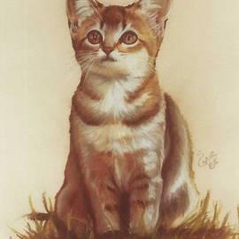 Sweet Kittie by Barbara Keith