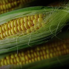 Sweet Sweet Corn by Cassi Moghan