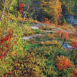 Swing Into Fall by Debbie Oppermann