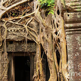 Ta Prohm Temple Door and Tree Roots by Bob Phillips