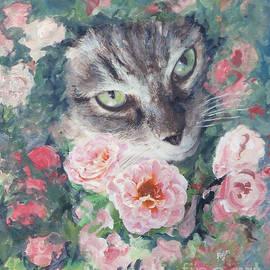 Tabby Cat In Rose Garden by Ryn Shell